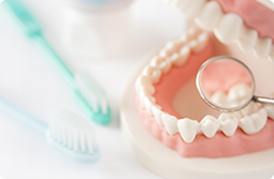 予防歯科の写真
